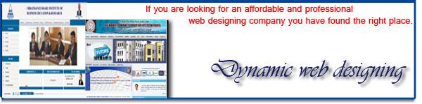 Dynamic Website Design and Development Kolhapur